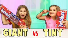 GIANT CANDY VS TINY CANDY Switch-Up!