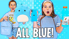 NO BUDGET 💙 BLUE ONLY 💙 SHOPPING CHALLENGE! | JKREW