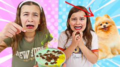 FIX OUR DOG'S SLIME CHALLENGE!! | JKrew